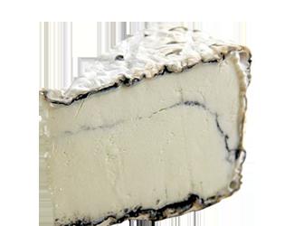 Cheese-Jumping-Good